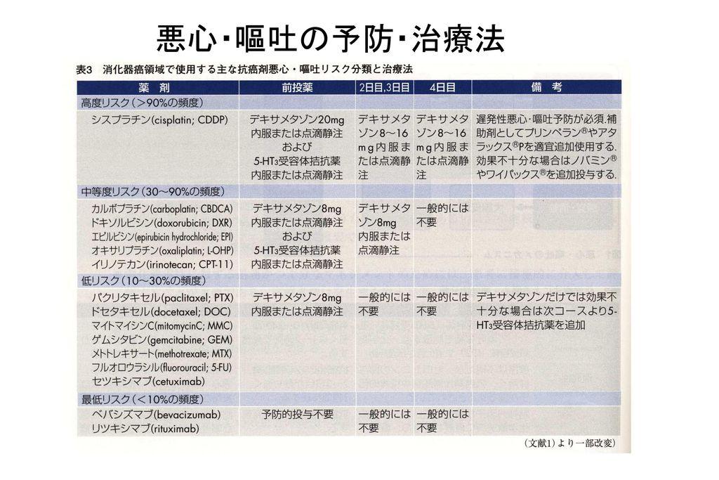 11/04/08 悪心・嘔吐の予防・治療法