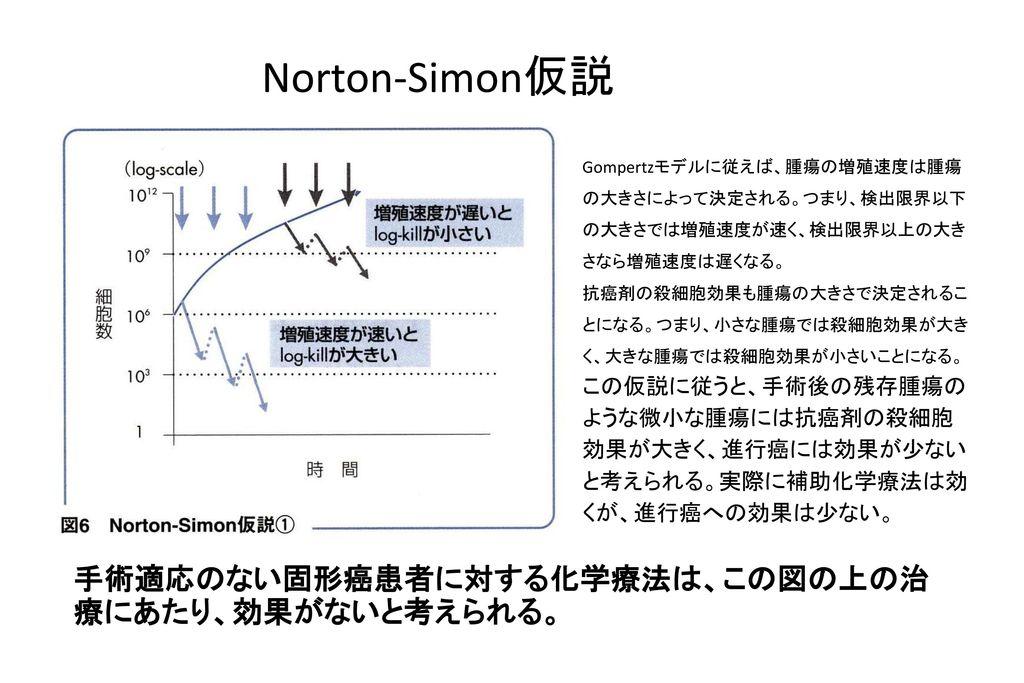 Norton-Simon仮説 手術適応のない固形癌患者に対する化学療法は、この図の上の治療にあたり、効果がないと考えられる。