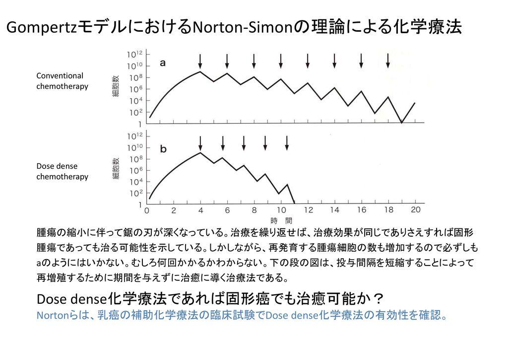 GompertzモデルにおけるNorton-Simonの理論による化学療法