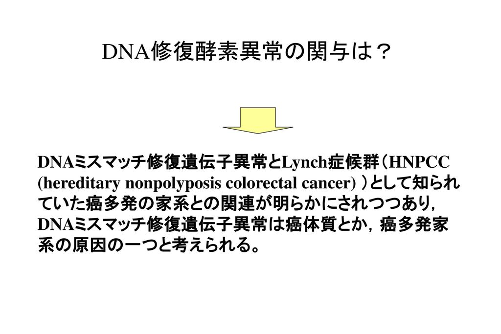 DNA修復酵素異常の関与は?
