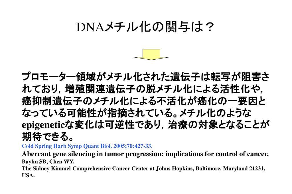 DNAメチル化の関与は?