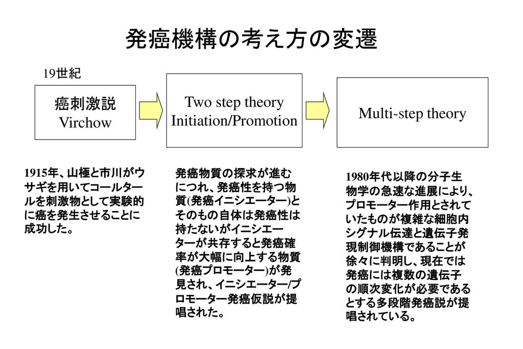 Initiation/Promotion