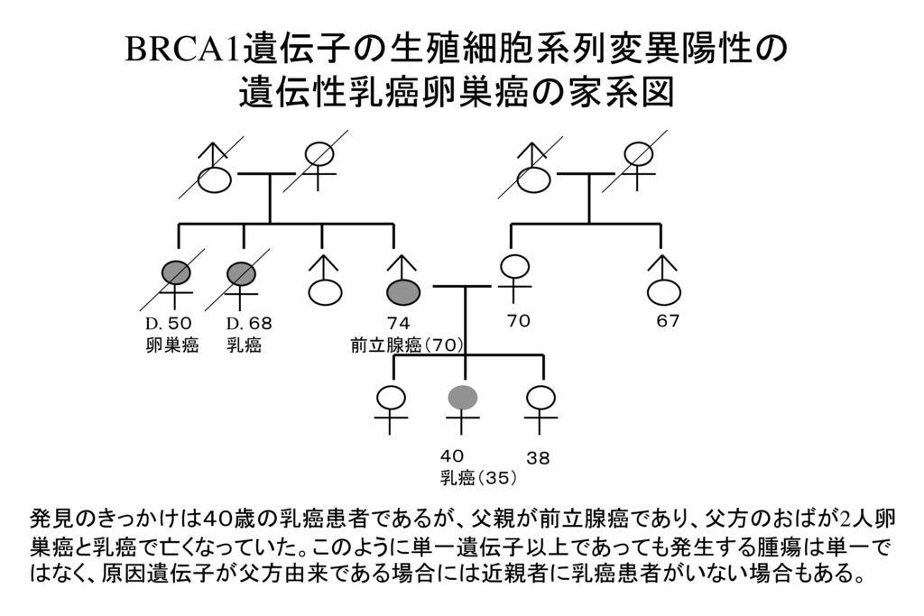 BRCA1遺伝子の生殖細胞系列変異陽性の 遺伝性乳癌卵巣癌の家系図