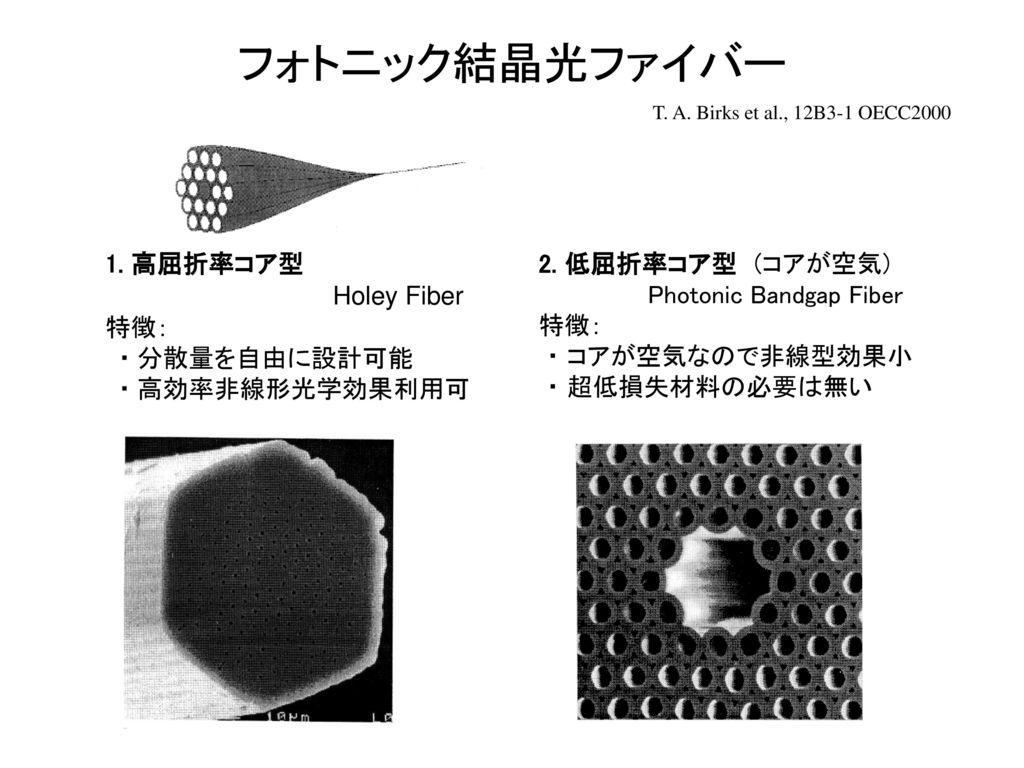 フォトニック結晶光ファイバー 1. 高屈折率コア型 Holey Fiber 特徴: ・ 分散量を自由に設計可能