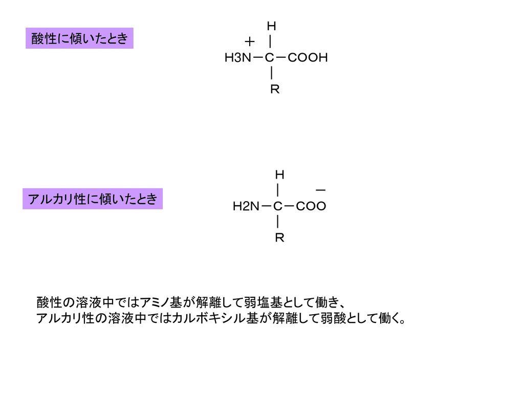 H +   H3N-C-COOH   R 酸性に傾いたとき.