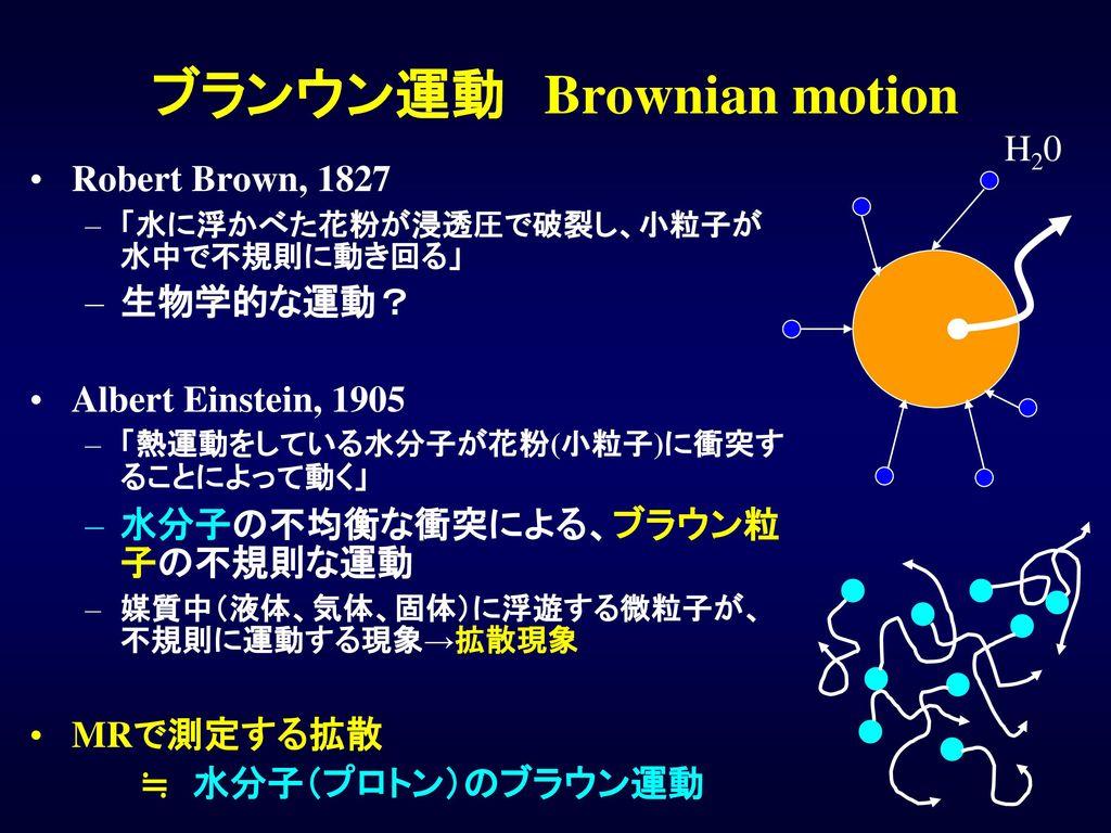 ブランウン運動 Brownian motion