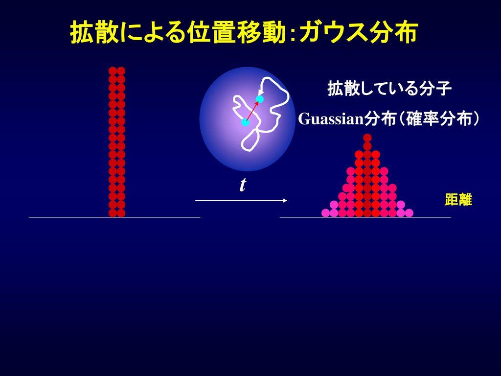 拡散による位置移動:ガウス分布 拡散している分子 Guassian分布(確率分布) 距離 t