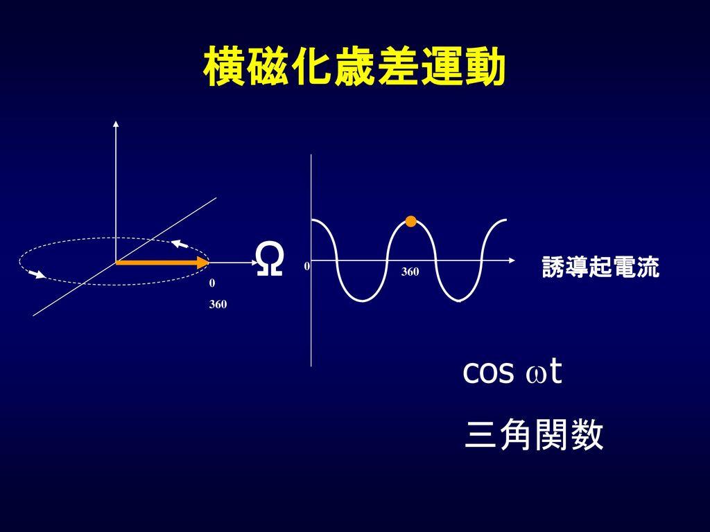 横磁化歳差運動 Ω 誘導起電流 360 360 cos wt 三角関数