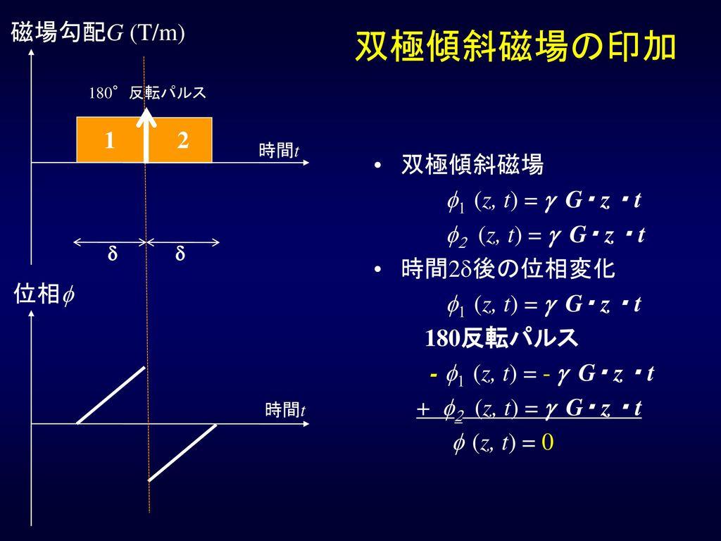 双極傾斜磁場の印加 磁場勾配G (T/m) 1 2 双極傾斜磁場 f1 (z, t) = g G・ z ・ t