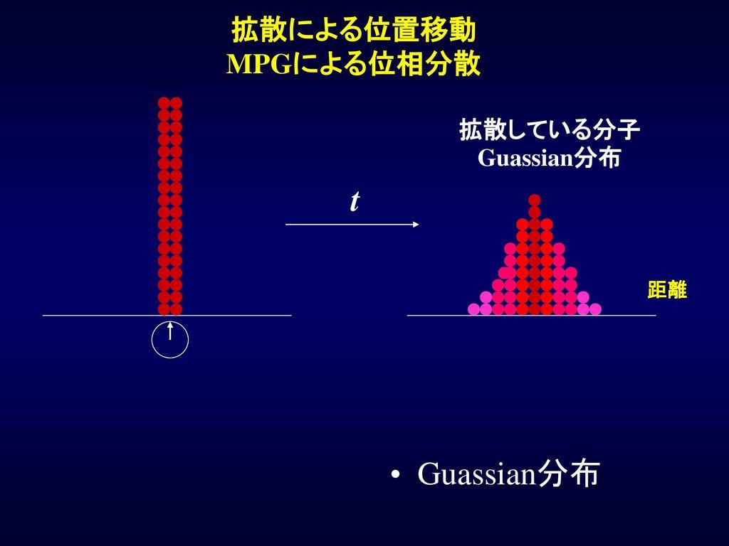 拡散による位置移動 MPGによる位相分散 拡散している分子Guassian分布 t 距離 Guassian分布
