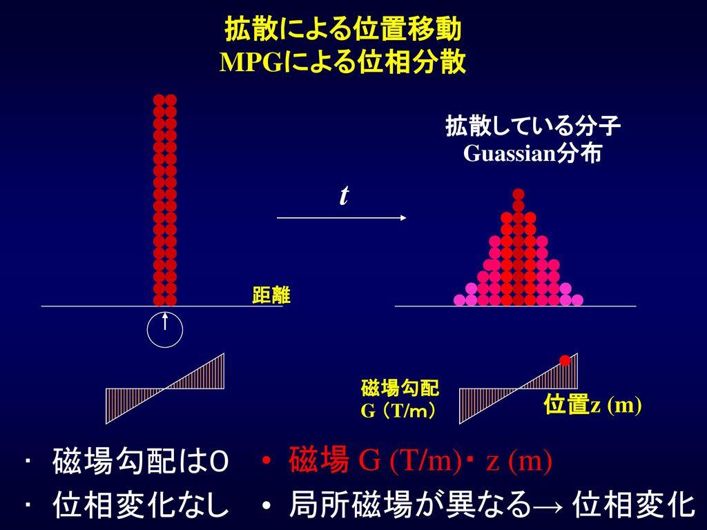 t 磁場勾配は0 位相変化なし 磁場 G (T/m)・ z (m) 局所磁場が異なる→ 位相変化 拡散による位置移動 MPGによる位相分散