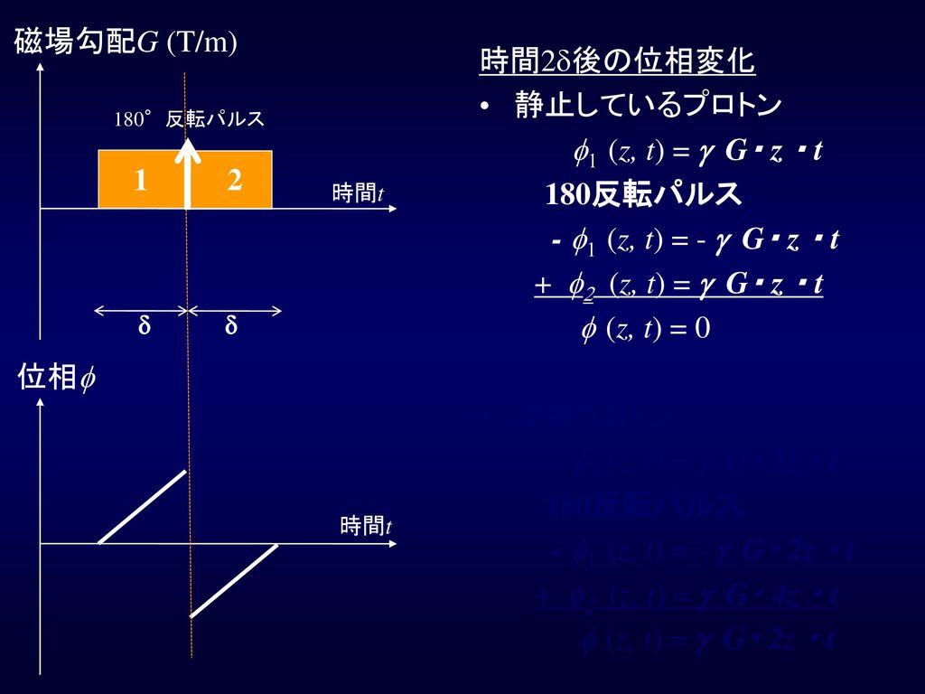 磁場勾配G (T/m) 時間2d後の位相変化 静止しているプロトン f1 (z, t) = g G・ z ・ t 180反転パルス