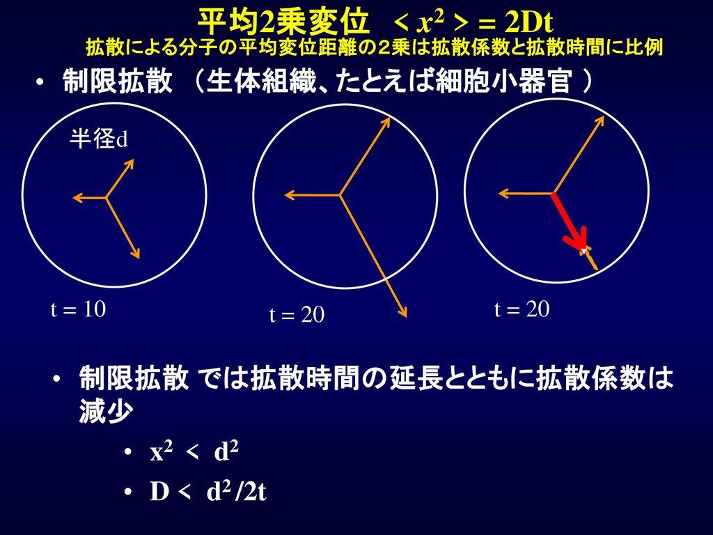 平均2乗変位 < x2 > = 2Dt 拡散による分子の平均変位距離の2乗は拡散係数と拡散時間に比例