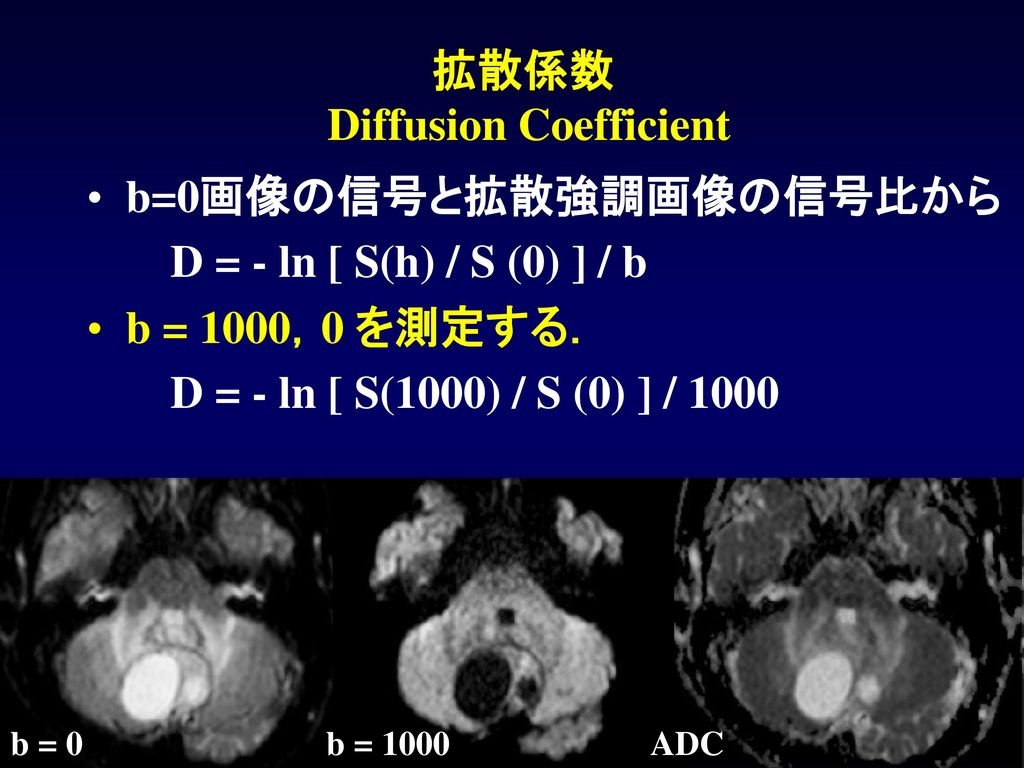 拡散係数 Diffusion Coefficient