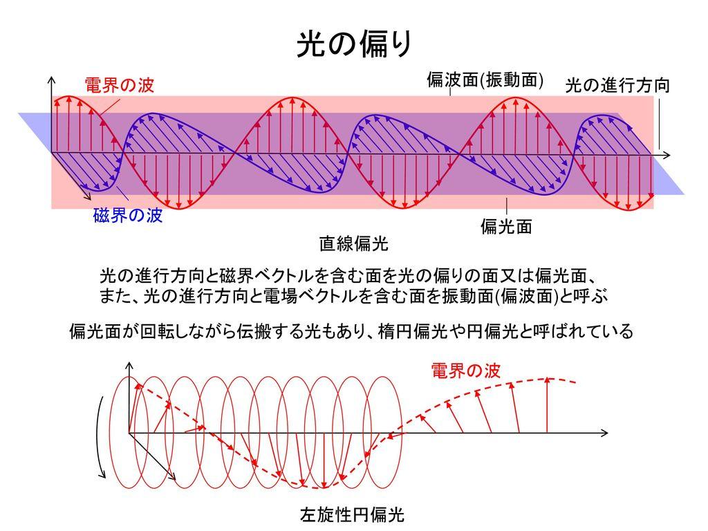 光の偏り 偏波面(振動面) 電界の波 光の進行方向 磁界の波 偏光面 直線偏光