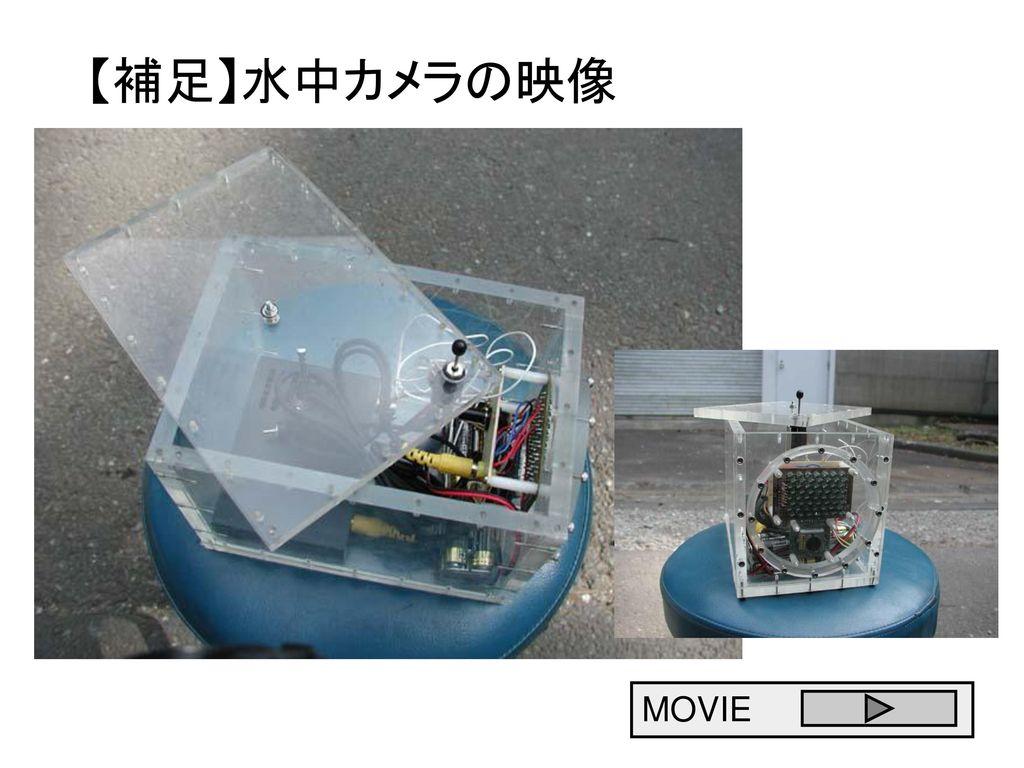 【補足】水中カメラの映像 MOVIE