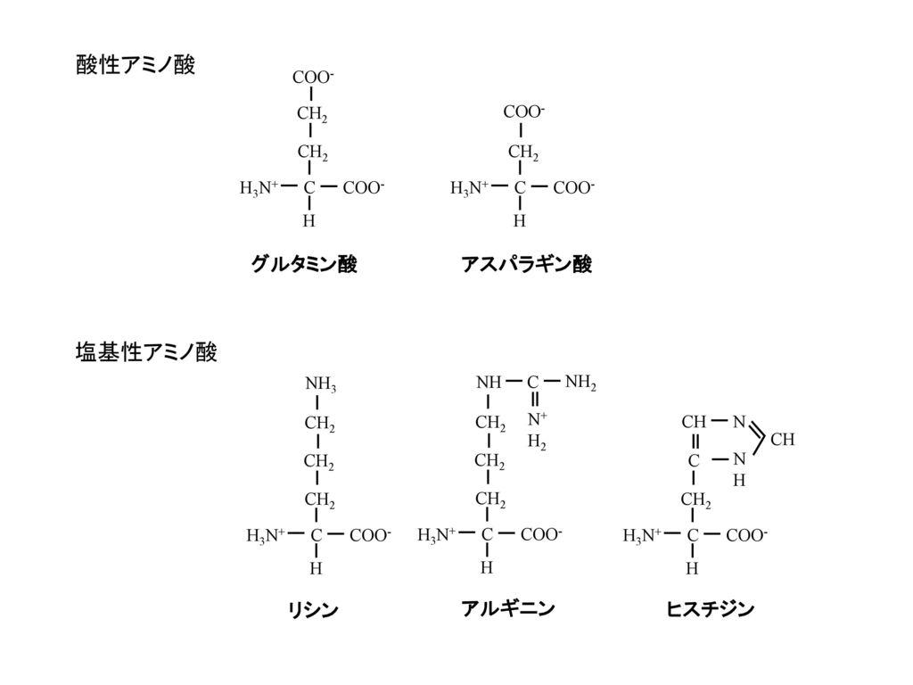 酸性アミノ酸 塩基性アミノ酸 グルタミン酸 アスパラギン酸 リシン アルギニン ヒスチジン COO- CH2 COO- CH2 CH2