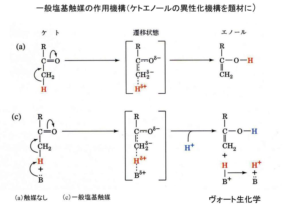 一般塩基触媒の作用機構(ケトエノールの異性化機構を題材に)