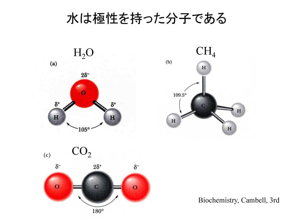 水は極性を持った分子である H2O CH4 CO2 Biochemistry, Cambell, 3rd