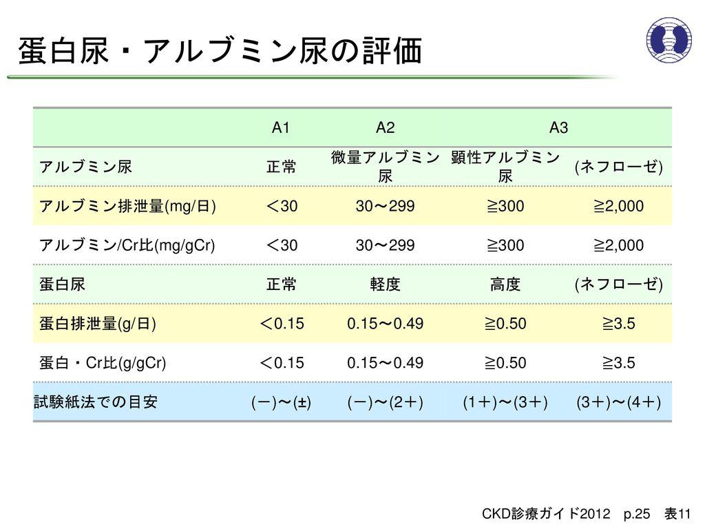 蛋白尿・アルブミン尿の評価 A1 A2 A3 アルブミン尿 正常 微量アルブミン尿 顕性アルブミン尿 (ネフローゼ)