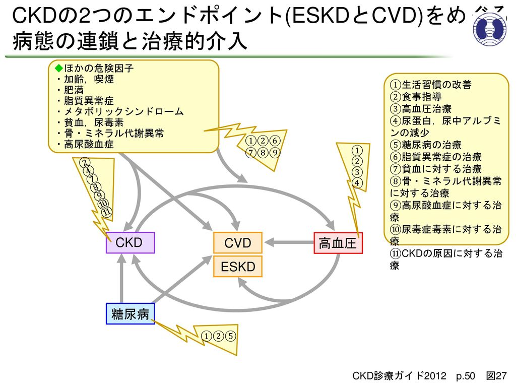 CKDの2つのエンドポイント(ESKDとCVD)をめぐる 病態の連鎖と治療的介入