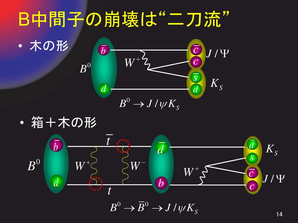 B中間子の崩壊は 二刀流 木の形 箱+木の形