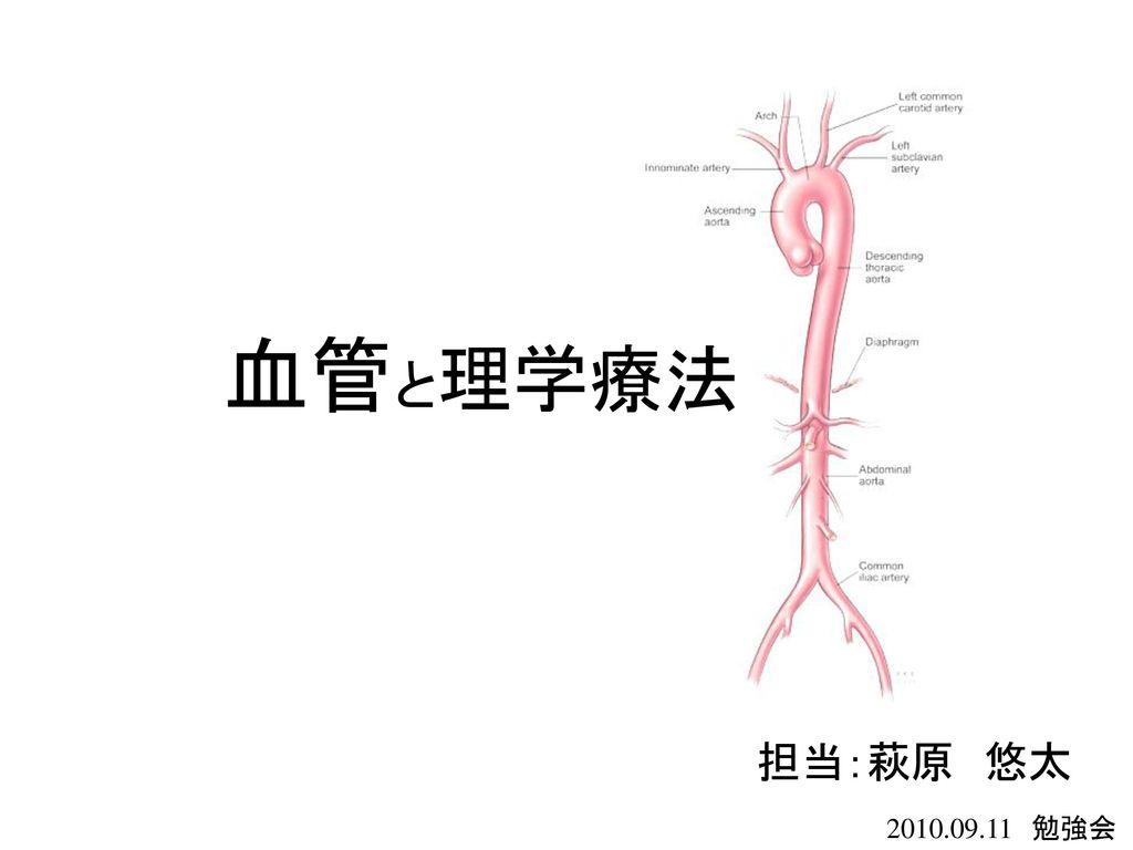 血管と理学療法 担当:萩原 悠太 2010.09.11 勉強会