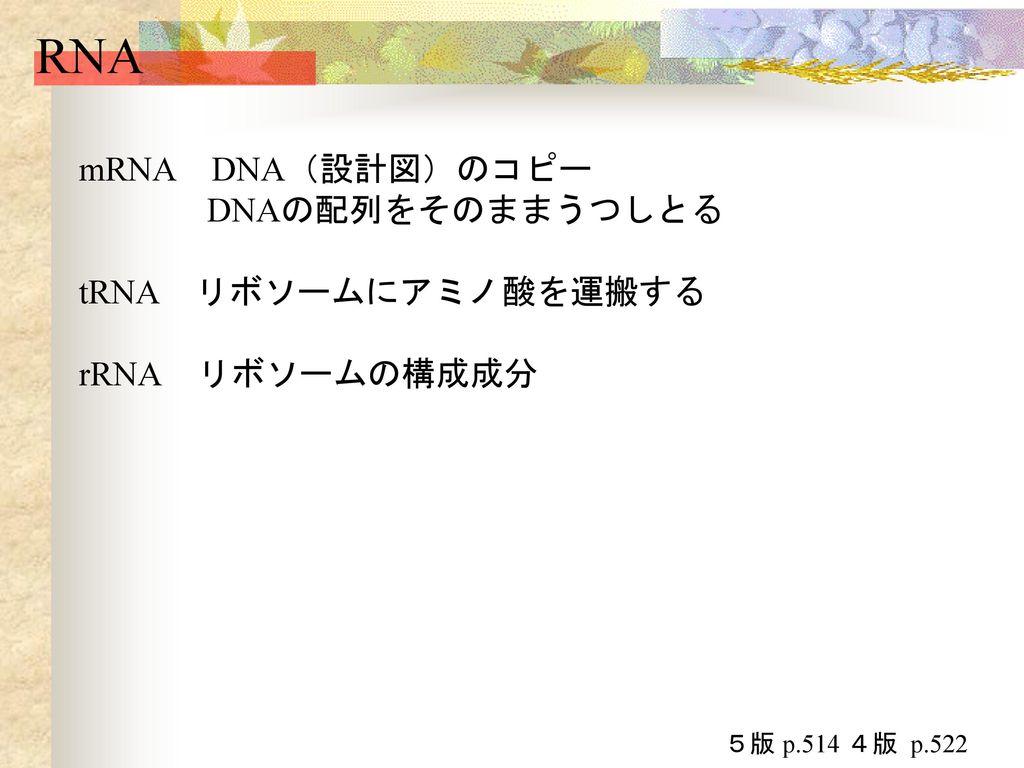 セントラルドグマ 遺伝情報の流れ DNA→RNA→蛋白質→代謝などの生命活動 DNA→遺伝情報を記録した「設計図」 全部の「設計図」→ゲノム