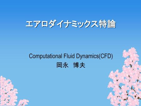 Computational Fluid Dynamics(CFD) 岡永 博夫