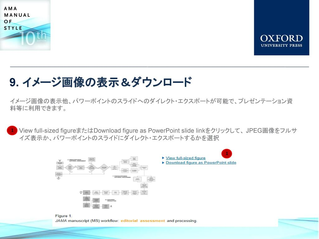ama manual of style 利用ガイド ppt download
