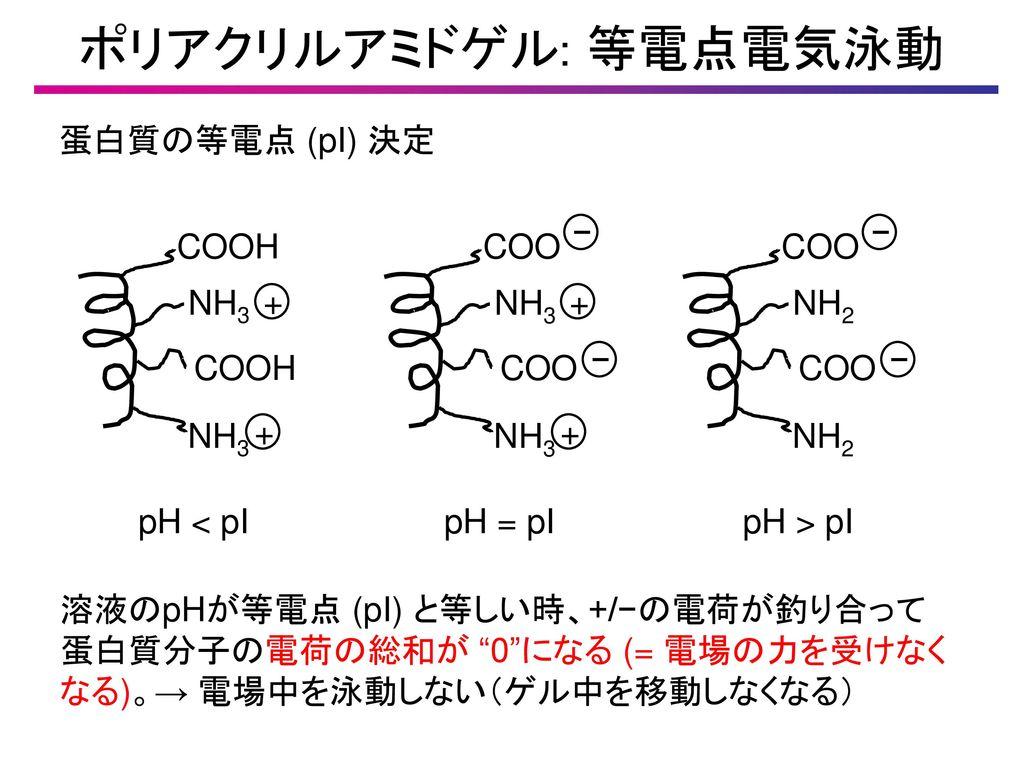 薬品分析学3. - ppt download