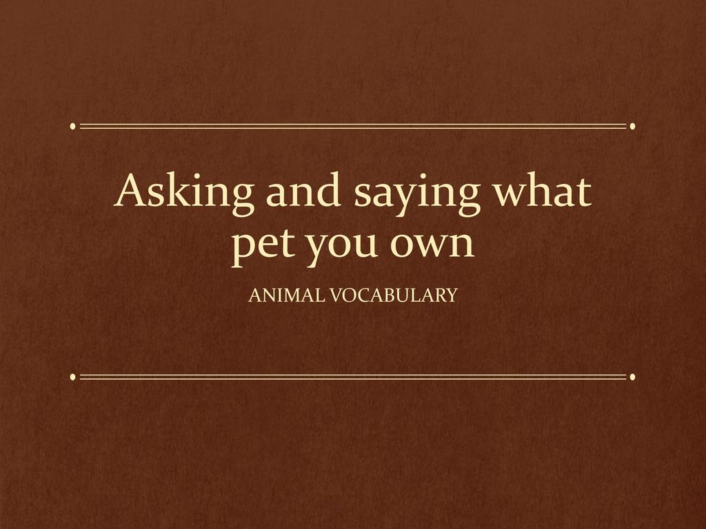 asking and saying what pet you own ppt download