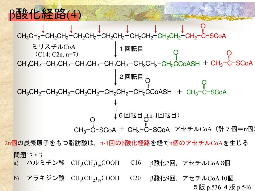 アラキジン酸 - Arachidic acid ...